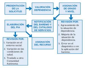 Esquema del procedimiento para la solicitud de la dependencia