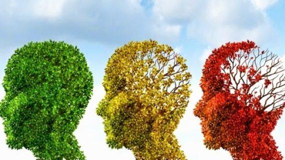 ¿Envejece nuestro cerebro?