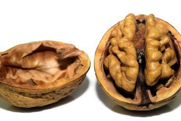 Alimentos que ayudan a tu cerebro